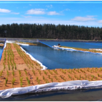 PVP wastewater treatment works